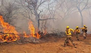 Imagen de Murieron  tres bomberos voluntarios que combatían los incendios en Bolivia