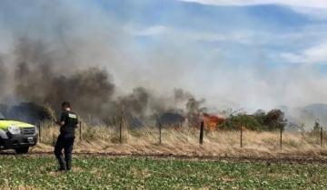 Imagen de Identificaron al hombre que murió en el incendio de un campo de Batán