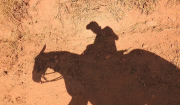Imagen de Villa Gesell: un delincuente le robó a una vecina... ¡a caballo!