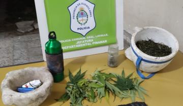 Imagen de Secuestran 6 kilos de marihuana en un terreno de General Lavalle