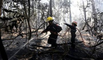 Imagen de Voraz incendio en Cariló: los bomberos lograron controlar el fuego