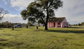 Imagen de General Madariaga: se inauguró una granja de contención para el acompañamiento de personas que sufren adicciones