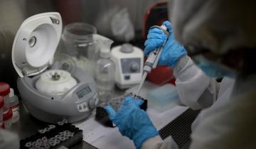 Imagen de Coronavirus en Argentina: los contagios se mantienen en la línea de los 10 mil
