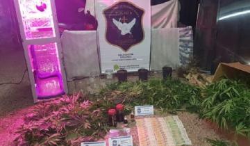 Imagen de Allanamiento en Madariaga: incautaron 31 kilos de marihuana y cocaína