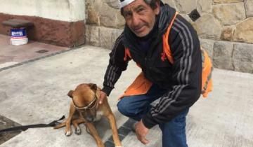 Imagen de Rocco, el perro fiel marplatense que asistió a su dueño al borde del desmayo