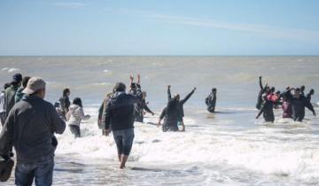 Imagen de Video: mirá el trabajo de los rescatistas para liberar a las orcas varadas