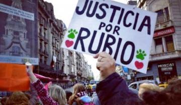 """Imagen de A un año del asesinato del perro """"Rubio"""": en qué estado está la causa judicial"""