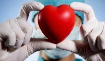 Imagen de Hoy se celebra el Día Mundial de la Donación de Órganos