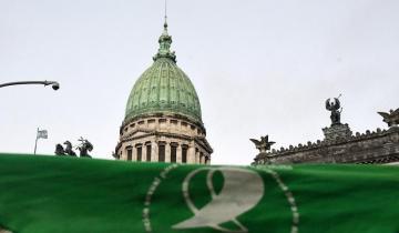 Imagen de El Senado nacional prevé votar la legalización del aborto el 29 de diciembre