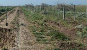Imagen de Se encuentra cerrado el terraplén sur del Canal 15
