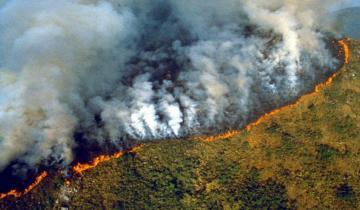 Imagen de Organizaciones No Gubernamentales denunciaron la responsabilidad de Jair Bolsonaro en la crisis del Amazonas