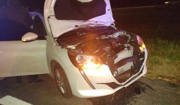 Imagen de Dolores: un hombre murió al ser atropellado en la Ruta 2