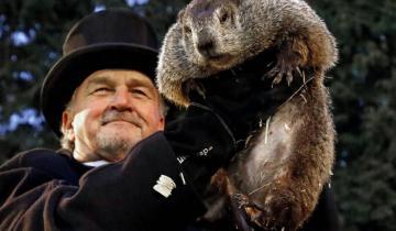 Imagen de Día de la Marmota: por qué se celebra hoy