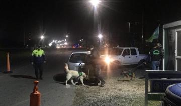 Imagen de Un hombre con pedido de captura fue detenido en un control de tránsito en General Lavalle