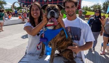 Imagen de Anotá a tu mascota: una nueva edición de la Caninatón llega a Santa Teresita