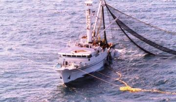 Imagen de Presentaron un amparo para prohibir la pesca de arrastre en la Costa Atlántica