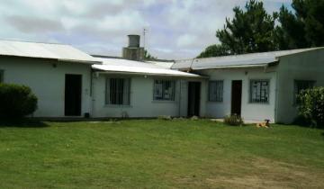 Imagen de General Lavalle: subastarán terrenos municipales en Las Chacras