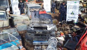Imagen de Allanan un desarmadero de autos y detienen a su propietario en General Madariaga