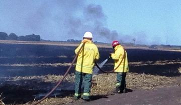 Imagen de Alertan por el alto riesgo de incendios forestales en la Región