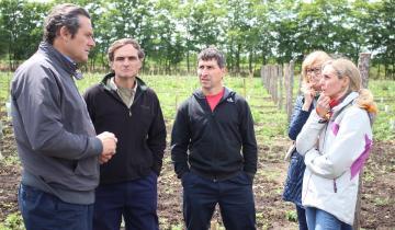 Imagen de Avanza a paso firme el proyecto del vino dolorense