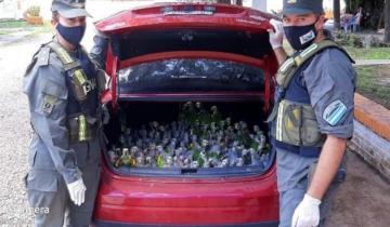 Imagen de Contrabandeaban loros y los detuvieron con 216 en el baúl