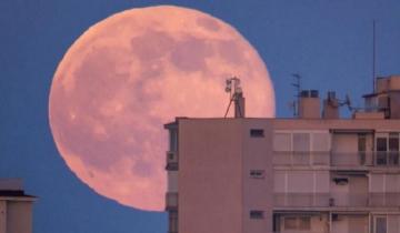 Imagen de Qué es la Superluna rosa de abril, el regalo del cielo para ver este martes en cuarentena