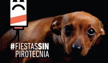 Imagen de La Defensoría bonaerense lanzó una nueva campaña contra el uso de la pirotecnia
