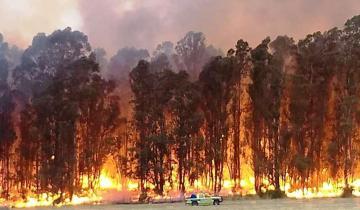 Imagen de Tandil: debieron evacuar un hotel por un gran incendio en las sierras