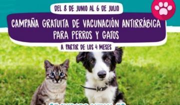 Imagen de La Costa: cuáles son las veterinarias adheridas a la campaña de vacunación antirrábica gratuita