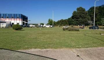 Imagen de Robaron más de 1000 obleas en la planta de la VTV de Castelli
