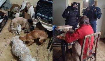 Imagen de Policía asiste a una mujer de 70 en estado de desnutrición al igual que sus 5 perros