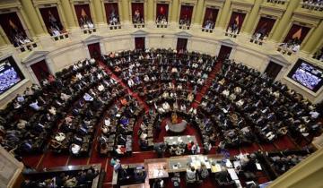 Imagen de Diputados y senadores congelaron sus sueldos y dietas por 180 días