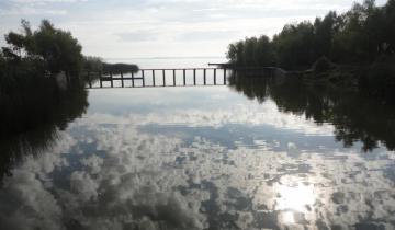 Imagen de Científicos hallaron hormonas de origen humano en un arroyo de Chascomús