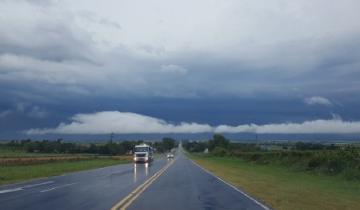 Imagen de Temporal en la Provincia: hubo ráfagas de casi 100 km/h, pero poca lluvia