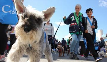 Imagen de Cómo surgió la innovadora idea de realizar un caninatón en La Costa
