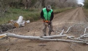 Imagen de Dolores: avanza la reparación de caminos y el corte de plantas en los caminos rurales