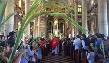 Imagen de Por qué se celebra el Domingo de Ramos y qué significado tiene la bendición del olivo