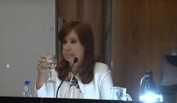 Imagen de Por qué Cristina Kirchner mencionó a Dolores en su declaración