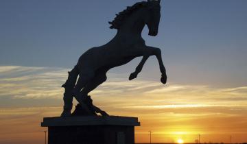 Imagen de El origen del nombre de Tordillo: un caballo que es leyenda