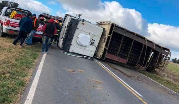 Imagen de Volcó un camión de hacienda y murieron varios animales