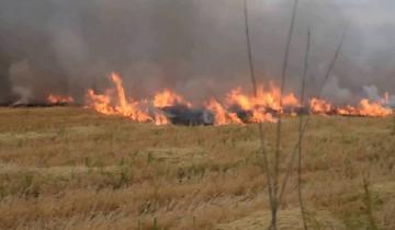 Imagen de Advertencia: peligro de incendios forestales para Madariaga y la región