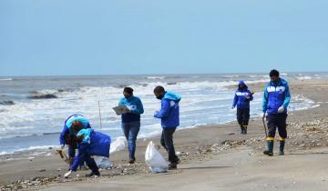 Imagen de La Costa: el 86% de los residuos encontrados en un censo y limpieza de playas fueron plásticos