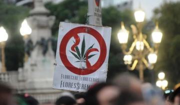 Imagen de La Defensoría del Pueblo reclamó el fin de la persecución a los consumidores de cannabis